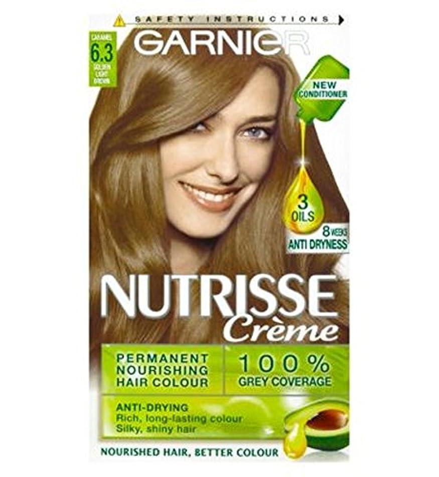 充電小競り合い予測するガルニエNutrisseクリームパーマネントヘアカラー6.3キャラメルライトブラウン (Garnier) (x2) - Garnier Nutrisse Cr?me Permanent Hair Colour 6.3 Caramel Light Brown (Pack of 2) [並行輸入品]
