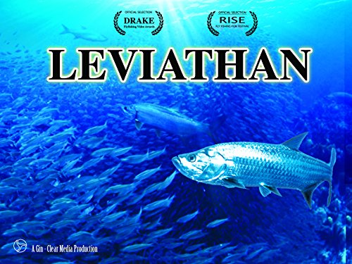 Leviathan Drive To Costa Rica