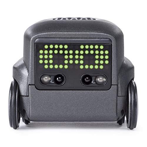 Boxer 6045396 - Boxer - schwarz (Solid), kleiner Robo, sofort spielbereit, App - Unterstützung, ab 6 Jahren, sortiert