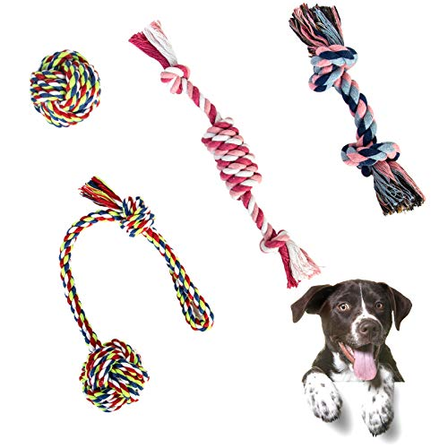 4 Pcs Hundespielzeug für Kleine und Mittlere Hunde, Tau Hundespielzeug Hund Seil Spielzeug Interaktives Baumwolle Kauspielzeug Vorteilhaft für die Zahnreinigung des Hundes (Bunt)