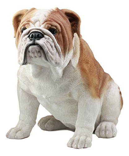 Ebros Large Lifelike Realistic English Bulldog Statue 14.5' Tall Fine Pedigree Dog Breed Collectible Decor with Glass Eyes