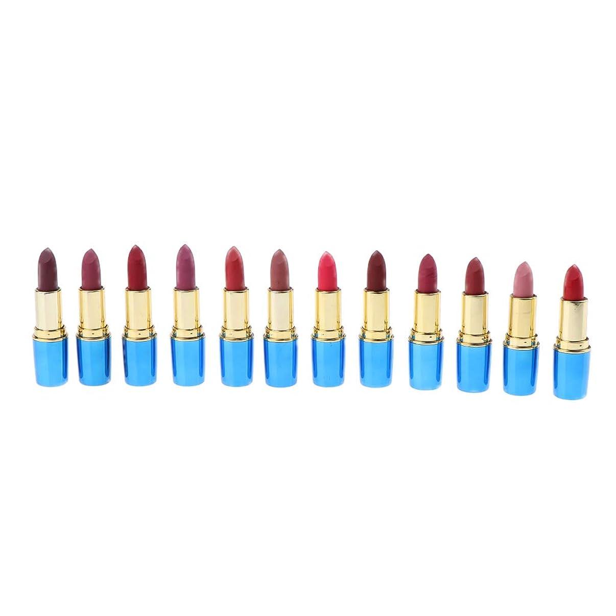 答え扱う一月B Blesiya 12色 口紅 唇メイク お化粧 防水 リップスティック