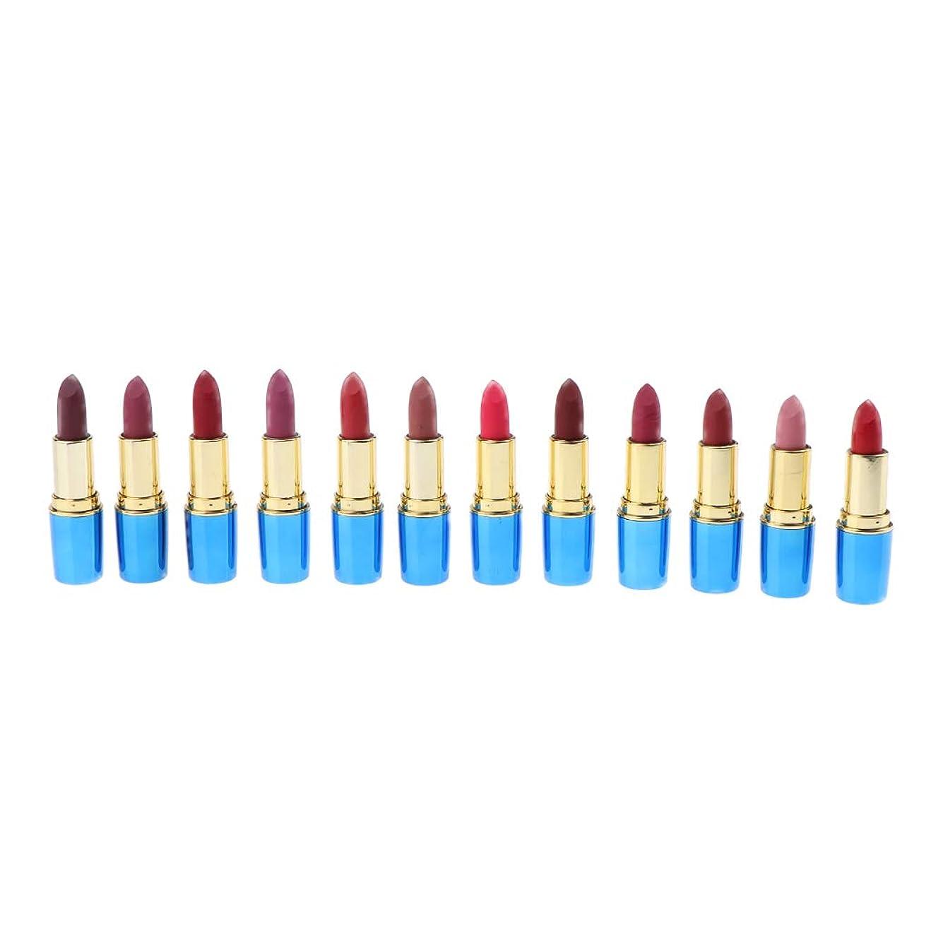 高価な紫のつぼみ12色 口紅 唇メイク お化粧 防水 リップスティック