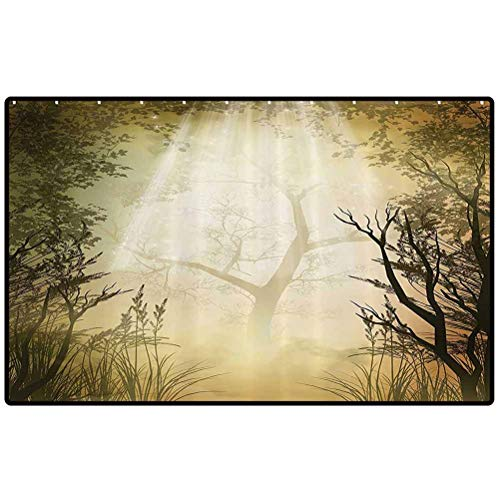 Mystic Forest Decor Personalized Doormat Fantasy Golden Mist Mystical Spot Deep Down in Forest with Sun Beam Outdoor Doormat for Front Porch/Kitchen/Laundry Room