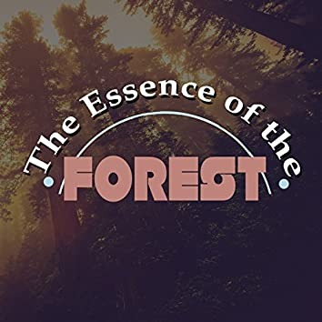 The Essence of the Forest