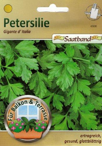 Petersilie Gigante `Italia Saatband für Balkon & Terrasse ertragreich gesung glattblättrig Schnittpetersilie 43930