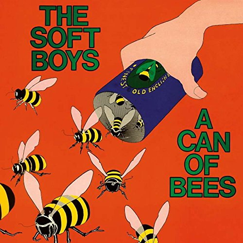 A Can Of Bees - The Soft Boys
