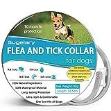 Collar Antipulgas para Perros, 63,5cm Ajustable Impermeable Collar Antiparasitos Perros, 100% Natural Perro Collar Antiparasitario, Ayuda a los Perros a Repeler Eficazmente Piojos, Pulgas y Parásitos