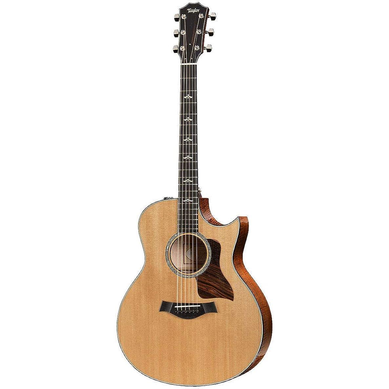 降ろすグラディス袋Taylor 616ce 600 Series エレクトリックアコースティックギター