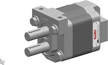 Buzile Dump Pump BG102-20RMS,Replacement:G102-1-2.0R-4S,3089310416,S3LD-15-2BRPR