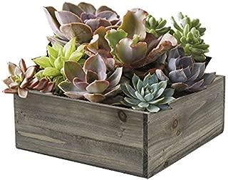 CYS EXCEL Planter Box, Wood Planter, Decorative Craft Box, Succulent and Floral Arrangements, Wood Rectangle Box, Wood Planters with Removable Zinc Liner (H:4