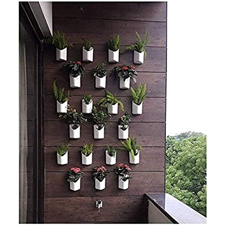 """Planters Plastic Wall Hanging Planter, White, Front Height - 4"""", Back Height - 6.5"""", Side Width - 5.5"""", Back Width - 5"""", 12 Pieces"""