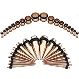 Bodystars Ear Gauges Stretching Kit - 36Pcs Stainless Steel Tapers and Plugs Set, Prefect for Heavy Metal, Punk Rock, Tattoo, Street or Daily Wear (Rose Gold)