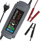 Erayak Batterieladegerät 6V/12V-1A Autobatterie Ladegeräte für 2-40AH Batterie Auto, Motorrad, Wohnmobil, Rasenmäher (Grau-1A)