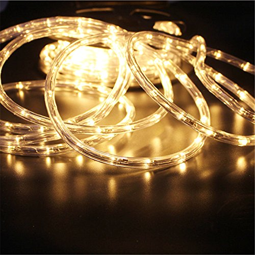 PYSICAL 110V 2-Wire Waterproof LED Rope Light Kit for Background...