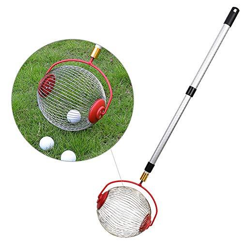 Yiran Multifunktion Rollsammler, Ohne Aufwand Fallobst, Walnüsse, Kirschen und Äpfel aufsammeln - Ideal auch als Greifer für Golfbälle, Tennisbälle