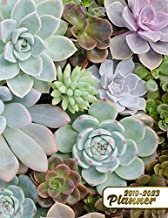2019-2023 Planner: Cactus 5 Year Planner with 60 Months Calendar Spread. Succulent Five Year Organizer Agenda Schedule Notebook and Business Planner.
