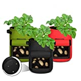 Aebitsry 3 Pack 7 Gallon Potato Grow Bags, Breathable Non-Woven Cloth, Tomato Flower Vegetable Growing Bags Plant Container Aeration Fabric Pots with Flap Window & Handles (Black Green Red)