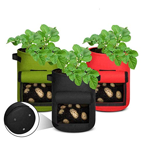 Aebitsry 3 Pack 10 Gallon Potato Grow Bags, Breathable Non-Woven Cloth, Tomato Flower Vegetable Growing Bags Plant Container Aeration Fabric Pots with Sticky Tape Window & Handles (Black Green Red)