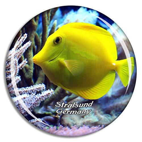 Weekino Stralsund Aquarium Deutschland Kühlschrankmagnet 3D Kristallglas Touristische Stadtreise Souvenir Collection Geschenk Starker Kühlschrank Aufkleber