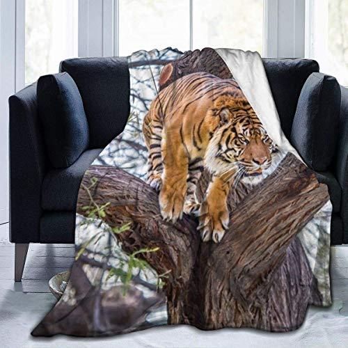 Popcorn In Spring Tree Tiger Throw Blanket Superweiche, Bequeme Micro Fleece Fuzzy Blanket Dekorative Decke Hypoallergen