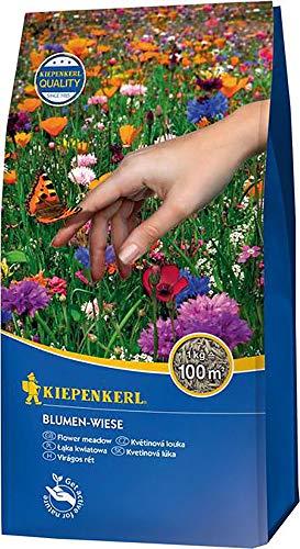Rasensamen – Blumen-Wiese 1 kg von Kiepenkerl - 2