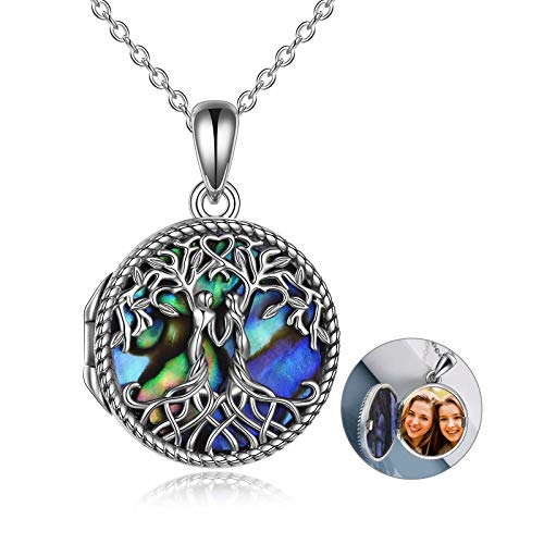 YFN Sister Locket Necklace for Picture,Sister Gifts from Sister, Sterling Silver Tree of Life Sister Pendant Necklace Jewelry, Birthday Jewelry Gift Necklaces for Sisters (Locket-Abalone Sister Necklace)