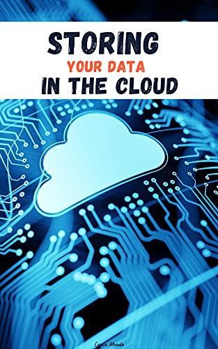 STORING YOUR DATA IN THE CLOUD by [Lursa Muuda]
