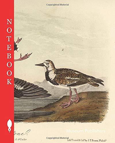 Notebook: Turnstone, Stonecreeper, Arenaria, Strepsilas interpres, 1856, John James Audubon, The birds of America (Pick up your pen and write)