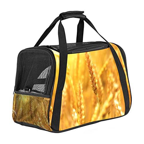 Trasportino per animali domestici con grano di grano, cereali di mais, da viaggio per gatti, cani e cuccioli, borsa portatile pieghevole per animali domestici approvata dalla compagnia aerea
