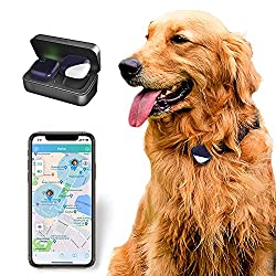 gps tracker for dogs implant