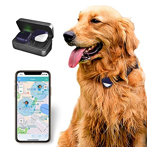 PetFon Pet GPS Tracker, No Monthly Fee, Real-Time...
