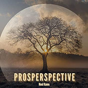 Prosperspective