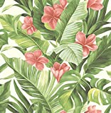 NuWallpaper NU2926 Tropical Paradise Peel & Stick Wallpaper, Green