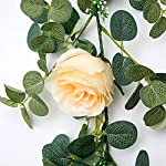1 pack 6ft artificial eucalyptus garland with flowers, rose garland vine with willow leaves, artificial wedding arch white flower garland for wedding party table decoration (champagne)