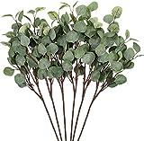 Whaline 6 pack ramas de hojas de eucalipto artificiales, tallo de dólar de plata, 23. 6' hoja de eucalipto en aerosol para decoración de fiestas, bodas, jardín, hogar, oficina (gris verde)