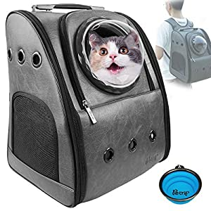 PETRIP Cat Carrier Cat Backpack Carrier for Large Cats 22 lbs Dog Backpack Carrier Dog Travel Bag Pet Backpack Carrier for Medium Small Cat Dogs Carrier for Hiking Airline Approved Pet Carrier