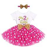 FYMNSI Vestido de manga corta para bebé, niña, de algodón, tutú de tul, línea A, vestido de princesa, vestido de fiesta para sesión de fotos. Rose Mein 2th Cumpleaños 2 Años