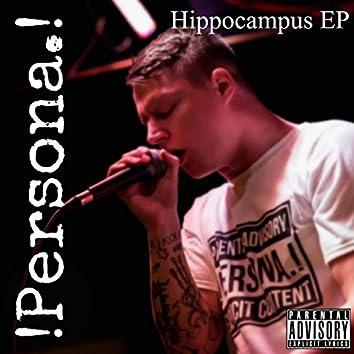 Hippocampus EP