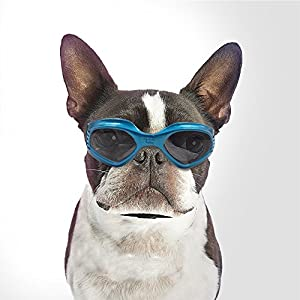 Namsan Dog Goggles Small to Medium Dog Sunglasses UV Resistant Windproof Snowproof Doggy Goggles Cat Glasses