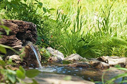 Heissner B1001-00 PE-Fertigbecken 1000 Liter  224 x 150 x 70 cm nierenförmiges Teichbecken für Ihren Gartenteich - 4