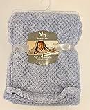 Adirondack Baby Soft & Shimmery Baby Blanket (Blue)