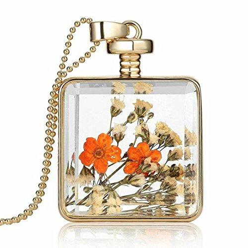 Daesar Collar Flores Secas Collar Cuadrado Transparentee Botella de Deseos Collar Cadena 60CM