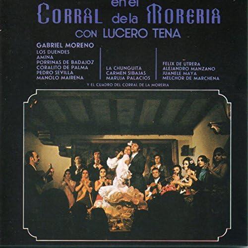Lucero Tena