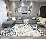 GBFR Alfombra de tinta grande con rayas grises marrón | decoración del hogar para sala de estar | Alfombra vintage | Alfombra de salón grande | Antideslizante, Sd-vx27, 180x250CM