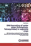DNA barcoding of spider mites (Prostigmata: Tetranychidae) in vegetable crops: DNA barcoding: accelerate the pace of species discovery and understand phylogenetic relationship at molecular level