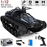 Remote Control Truck, 1:12 Scale Off Road Vehicle, 2.4Ghz Radio RC Truck, 4WD High Speed All Terrain RC Trucks for Boys(Black)