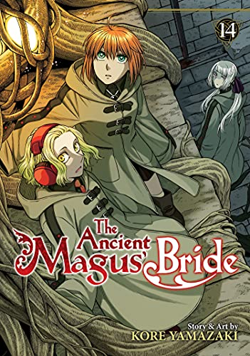 The Ancient Magus' Bride 14