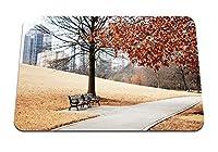 22cmx18cm マウスパッド (都市景観公園パス紅葉木ベンチ芝生の丘の中腹の建物) パターンカスタムの マウスパッド