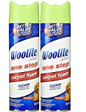 Woolite One Step Foam Carpet Cleaner - 22 oz - 2 pk